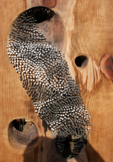 <h5>Close up of nail wood sculpture </h5>